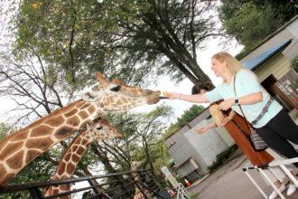 在宇都宮動物園近距離接觸動物